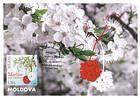 № 945 MC1 - Traditional «Mărţişor» Talisman and Cherry Blossoms