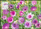 № 951 MC1 - Flora: Wild Flowers 2016