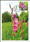№ 961 MC1 - WWF - Protected Flora: Turkish Marsh Gladiolus (Gladiolus Imbricatus) 2016