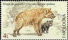 № 982 (4.00 Lei) Cave Hyena (Crocuta Crocuta Spelaea)