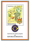 №  225-228 PF - Wines and Grapes (I) 1997